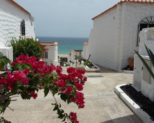 Anlage Bahia Playa